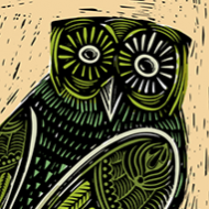 OWL : Outdoor & Wilderness Learning